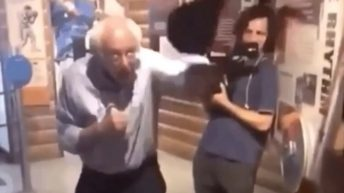 Bernie Sanders punching bag meme