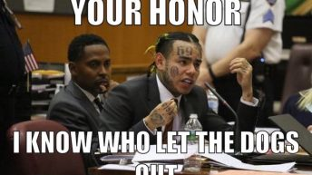 Tekashi who let the dogs out meme