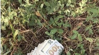 If you find money what would you do?