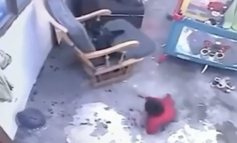 cat saves baby from stairs