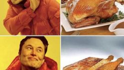 Elon Musk Thanksgiving Tesla Cybertruck Turkey meme