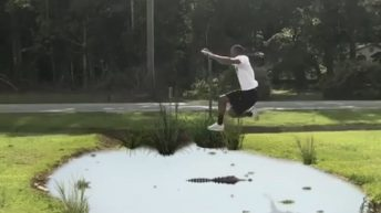 Man jumps over alligator pond
