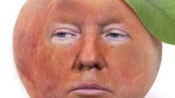 Impeach Trump peach meme