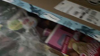 Kids order $700 worth of toys on Alexa