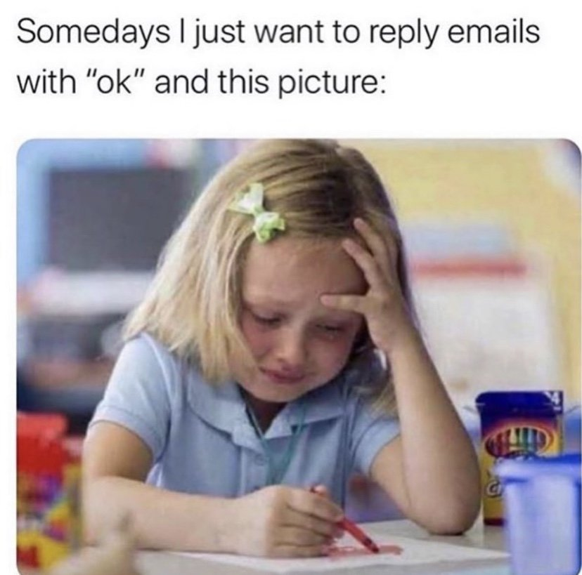 Somedays I just want to reply emails with ok and send this picture meme