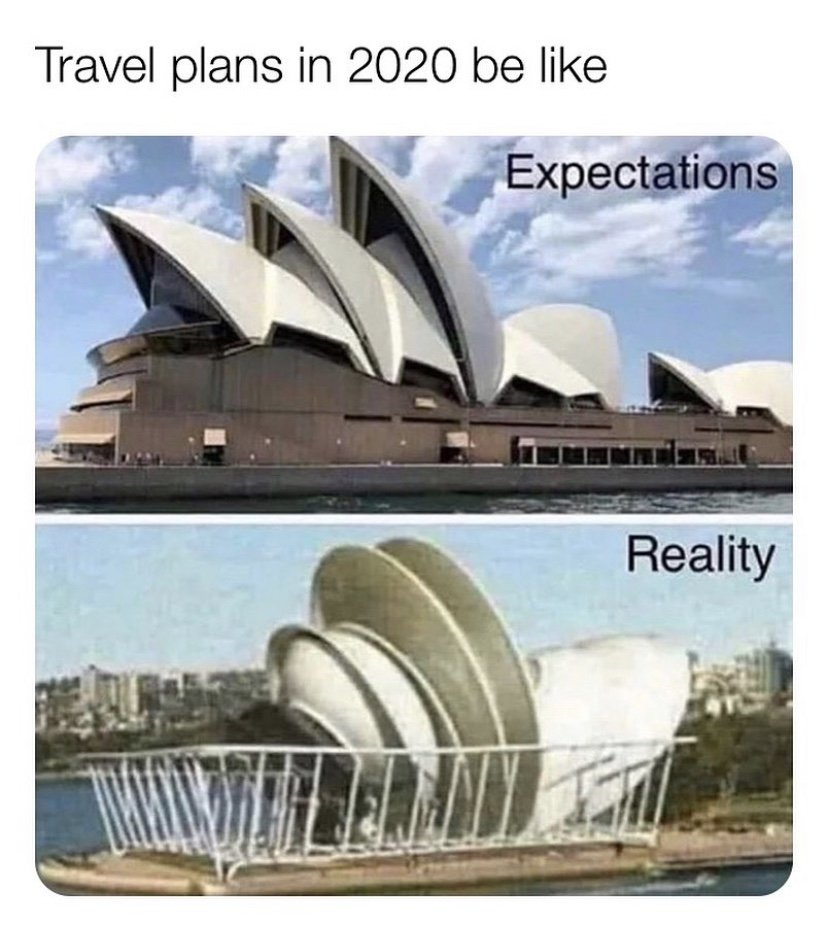Travel plans in 2020 be like meme