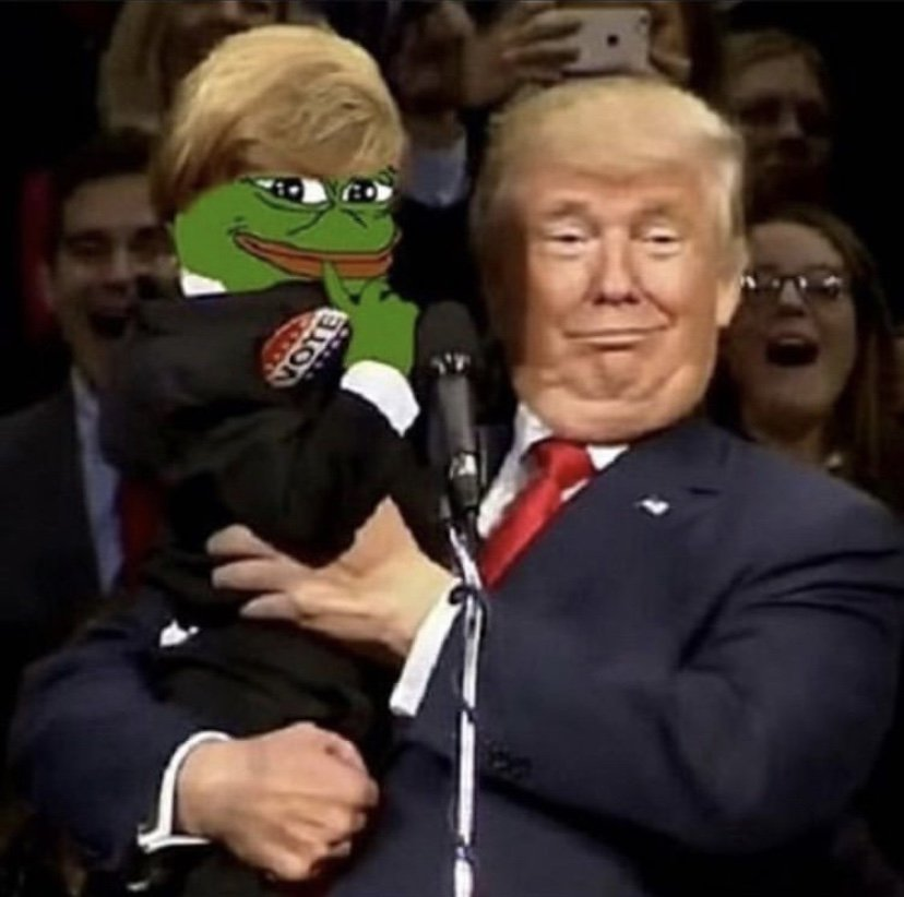 Pepe the frog and Donald Trump meme