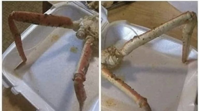 How skinny girls look when they take their clothes off crab legs meme