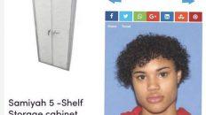 Wayfair Samiyah 5 shelf storage cabinet by wfx utility