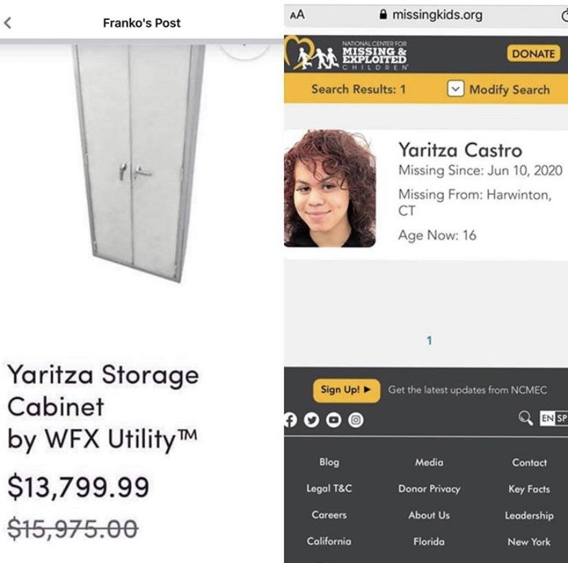 Wayfair Yaritza storage cabinet by wfx utility