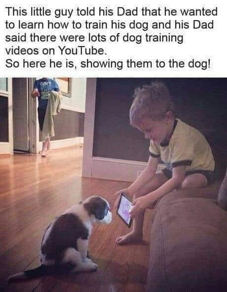 Kid shows dog Youtube to learn
