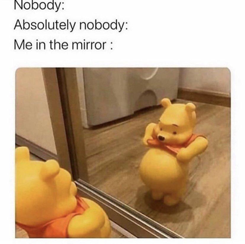 Me in the mirror winnie the pooh meme