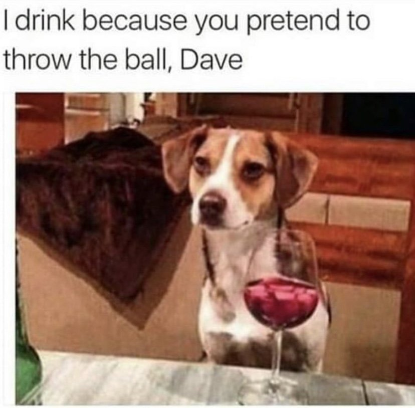 I drink because you pretend to throw the ball Dave meme
