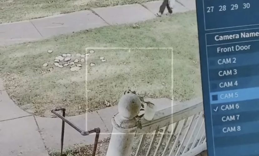 Neighbor caught stealing