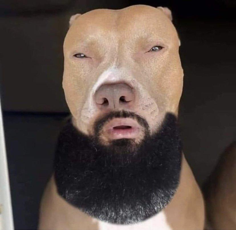 Light skin dog pose