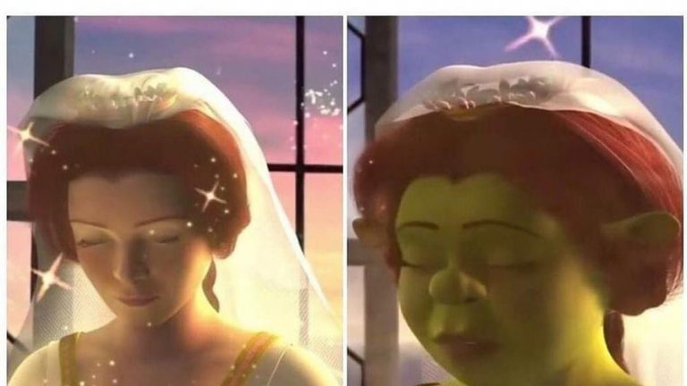 Me when I'm done taking pictures with the Snapchat filters Shrek meme