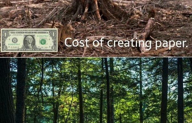 Cost of creating paper vs result of using dogecoin meme