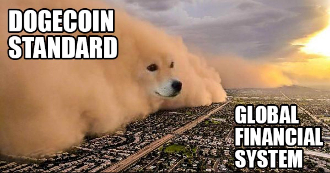 Dogecoin standard vs global financial system meme