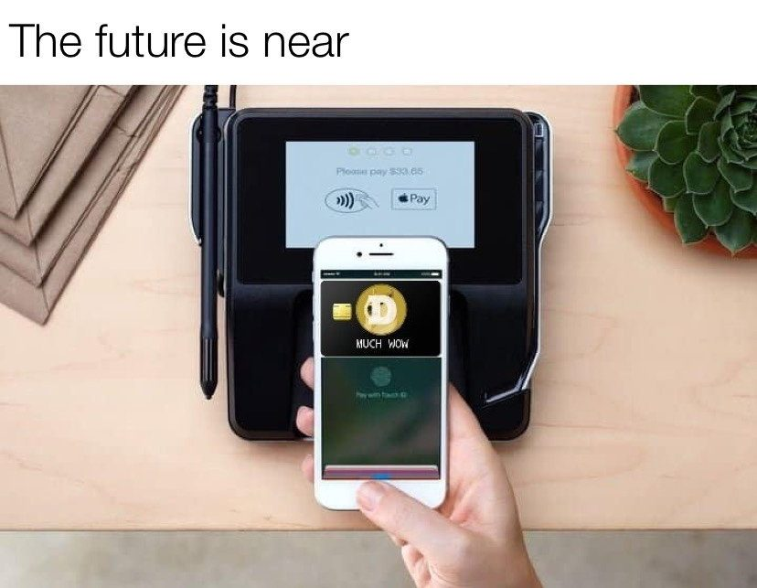 The future near dogecoin pay meme
