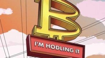Bitcoin I'm hodling it meme