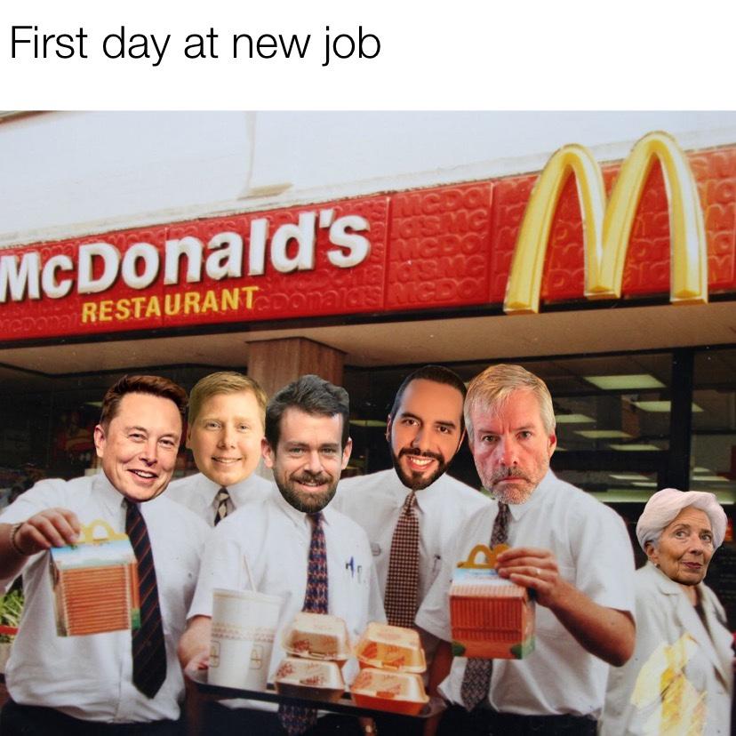 First day at the new job Bitcoin crash meme