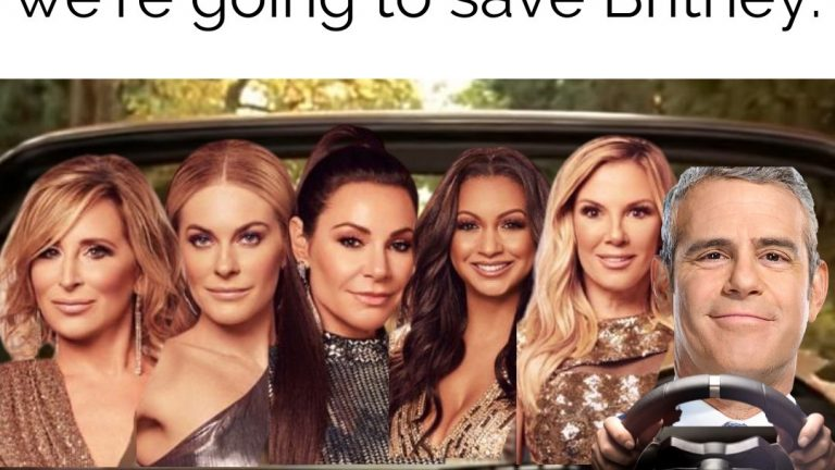 Get in housewives, we're going to save Britney meme