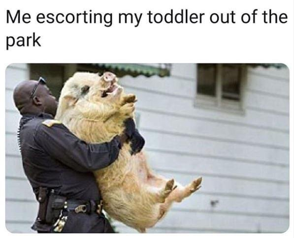 Me escorting my toddler out of the park meme