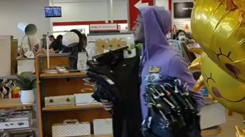 Thieves steal load of items from TJ Max