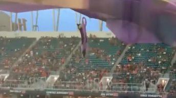 Cat falls inside University of Miami stadium