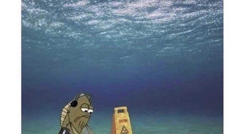 When your job is pointless but you need money Spongebob meme