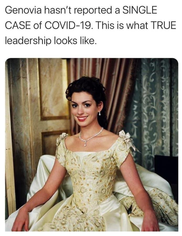 Genovia hasn't reported a single case of COVID-19. This is what true leadership looks like Princess Diaries Anne Hathaway meme