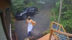 Woman tries to get away from bear in car
