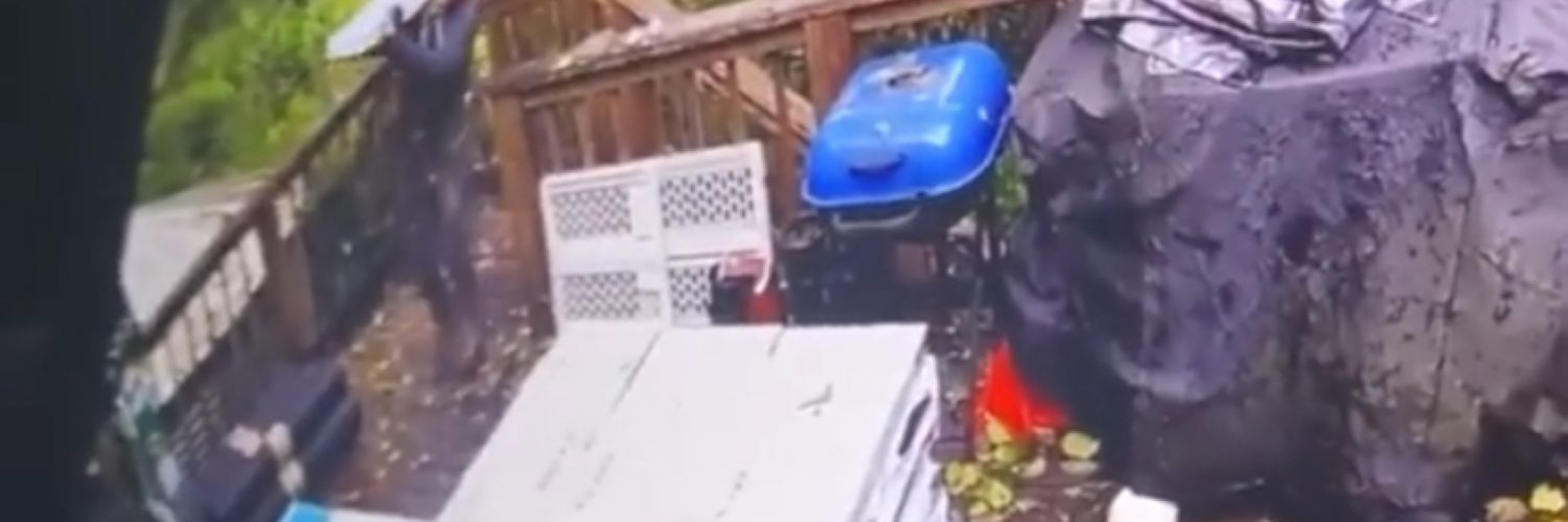 Man loads too heavy material and collapses deck